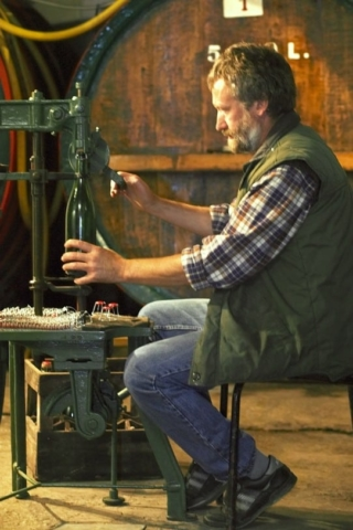 Wijnproductie
